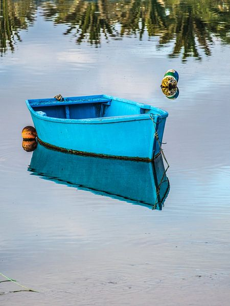 Klein blauw roeibootje spiegelend in stilstaand water van Harrie Muis
