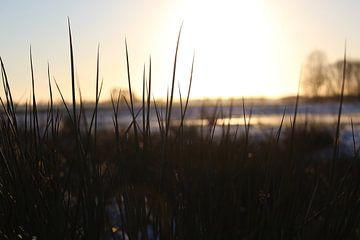 Winter landschap van jorrit Verduijn