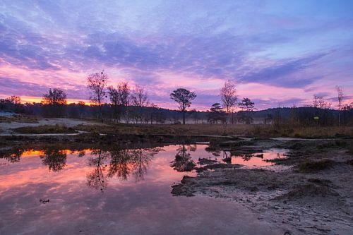 Rode beek bij zonsopkomst
