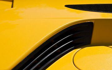 Lamborghini von Greetje van Son