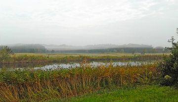Mist van Rinke Velds