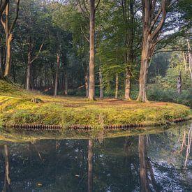 Reflectie in Elswout van Jeroen de Jongh