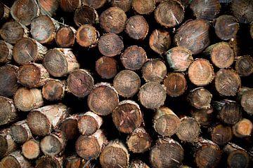 Gestapelde boomstammen van Peter Heeling