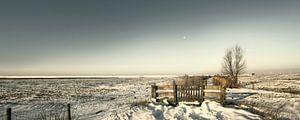 Hekwerk in de sneeuw