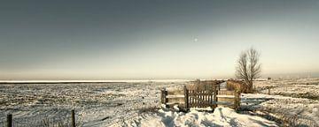 Hekwerk in de sneeuw von Eppo Karsijns