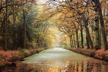 Herfstkleuren sur Fotografie Egmond