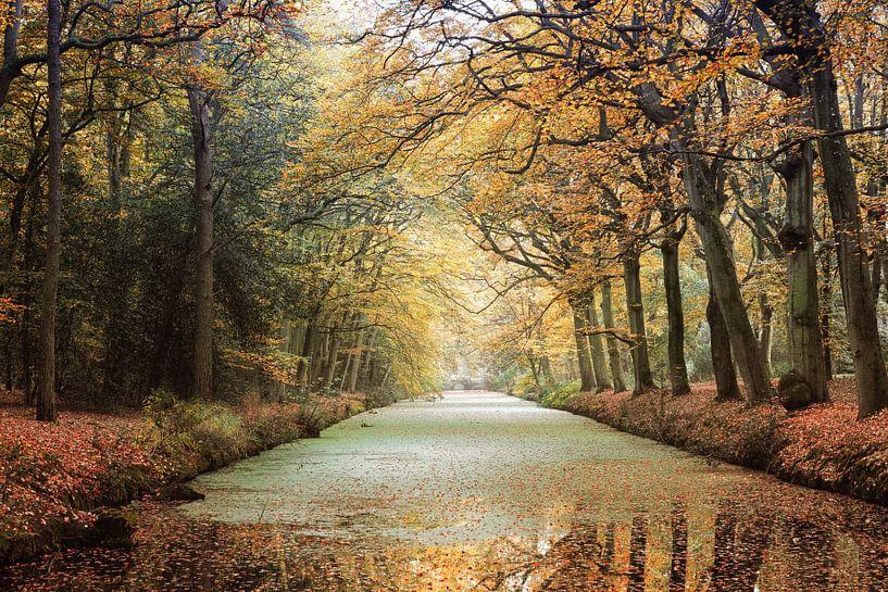 Herfstkleuren van Fotografie Egmond