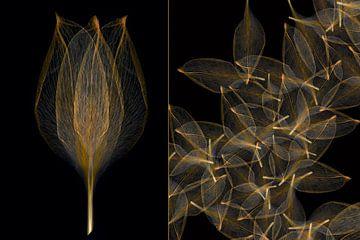 duo image: Tulpe aus Blättern von Klaartje Majoor
