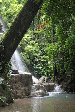 Thailand Wasserfall von Ruud Wijnands