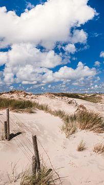 Blick über die Dünen von Rob van Dongen