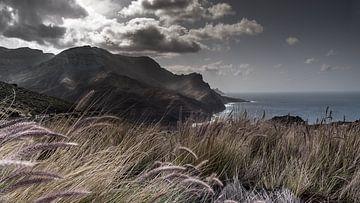 Küsten-Gran Canaria von t.a.m. postma
