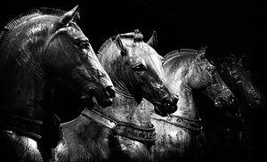 Quadriga - Paarden van San Marco van Robert-Jan van Lotringen