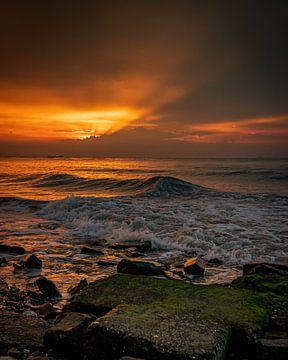 Summer waves. van Wesley Kole