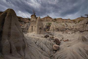Grijze gedeelte Tatacoa-woestijn van Ronne Vinkx
