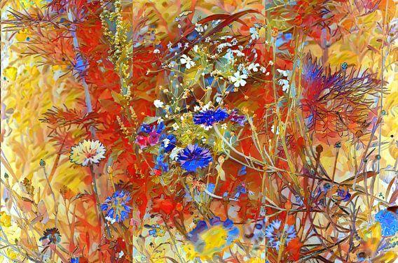 Sommerwiese mit Cornblumen