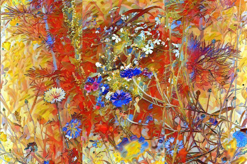 Sommerwiese mit Cornblumen von Patricia Piotrak