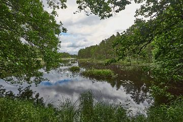 Schwedische Landschaft 183 von Geertjan Plooijer