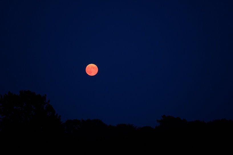 Oranje maan van Jeroen Götz