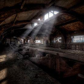 Bunkers de minerai abandonnés de l'ancienne aciérie Terre Rouge (urbex) sur Eus Driessen