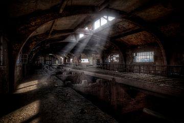 Verlassene Erzbunker aus der ehemaligen Stahlfabrik Terre Rouge (urbex) von