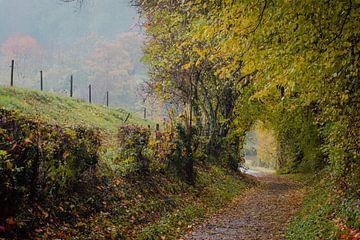 Herbst von rob creemers