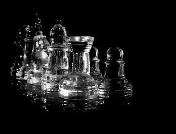 Schach van Anne Seltmann