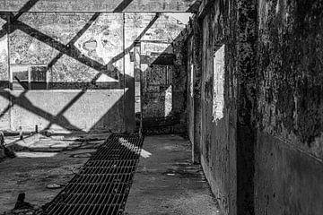 Verlassener Stall von Affect Fotografie