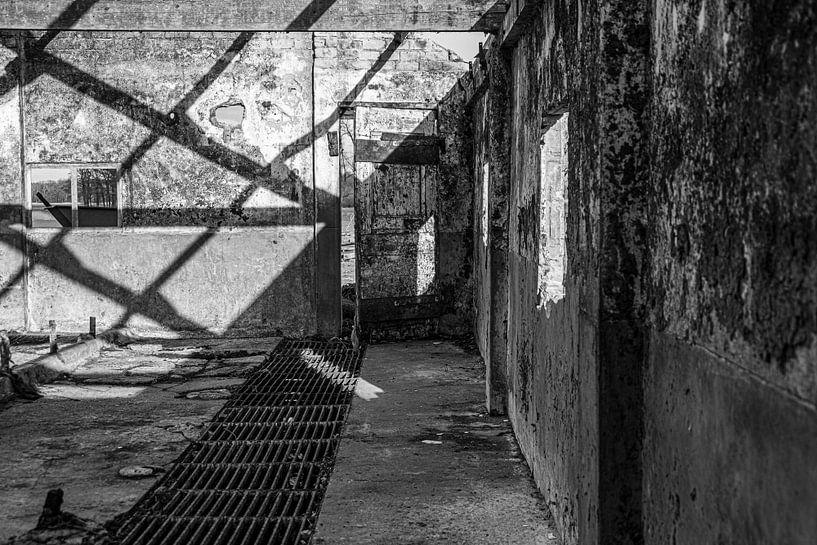 Verlaten stal van Affect Fotografie