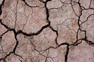 Dry land van