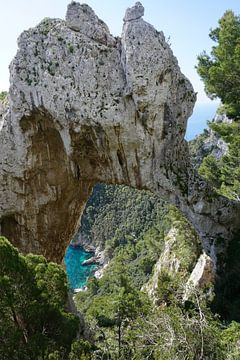 Felsformation auf Capri von Dominic Corbeau