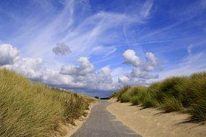 mooi Zeeland ( duinen bij Vlissingen)