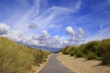 mooi Zeeland ( duinen bij Vlissingen)  sur