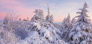 Fichtelberg panorama van Daniela Beyer