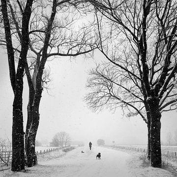 Winterlandschap van Ton Schrederhof