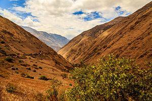 Bergen van Ecuador van