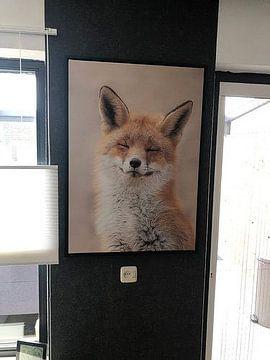 Klantfoto: Zen Fox van Dick van Duijn