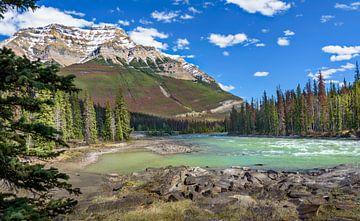 Athabasca bij de watervallen, Canada van Rietje Bulthuis