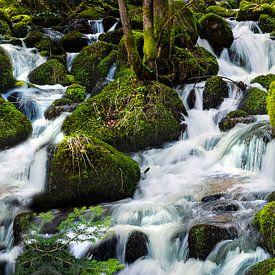 Cascade Forêt Noire 2 sur Anouschka Hendriks