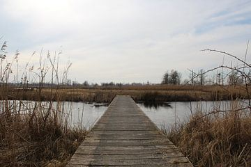 Brug in Nationaal Park De Alde Feanen van Anne Kernkamp