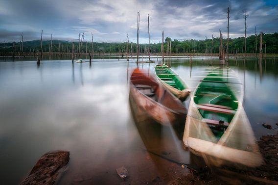 Moving boats van Peter Bijsterveld