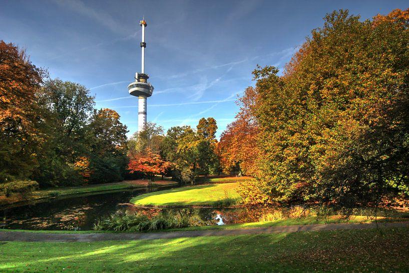 Herfst bij de Euromast Rotterdam van Gino Heetkamp