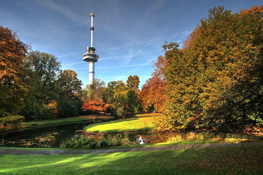 Herfst bij de Euromast Rotterdam