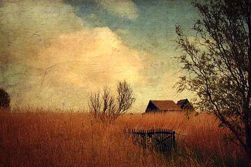 Das Haus im Schilf van Heike Hultsch