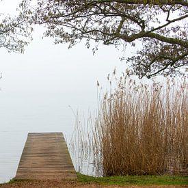 Steg im Wald von Wim Slootweg