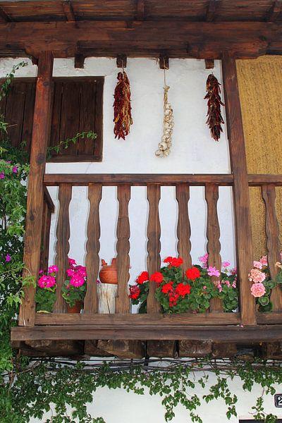 Mediterraan balkon, Spanje van Inge Hogenbijl
