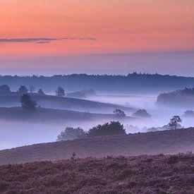 Het gelaagde landschap van de Posbank voor zonsopkomst van Dave Zuuring