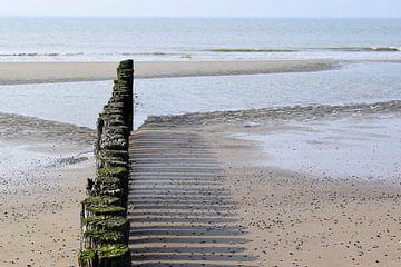 Paaltjes op het strand van Schouwen-Duiveland van Nicolette Vermeulen