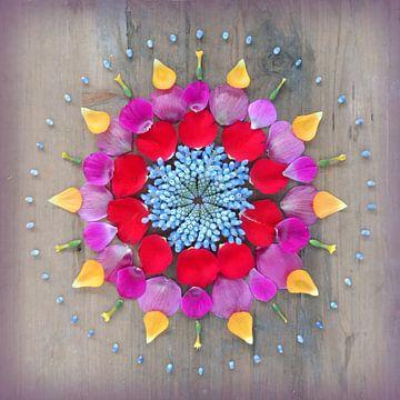 Blumen Mandala Happiness von Margreet Ubels