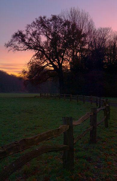 Zonsondergang Herfst in de Horsten van M DH