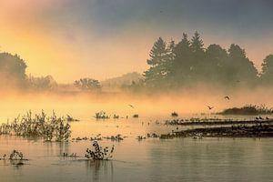 Rustige morgen met mist aan de Loire van Peschen Photography